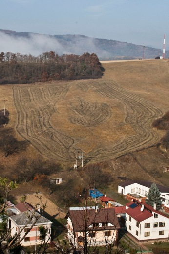 Field on Fire na jeseň. Branislav Nikolic.