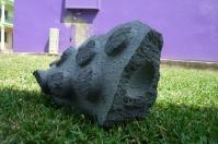 piedra xico