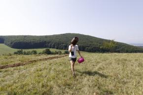 'Landscape, revisited' 2011 videocatalog
